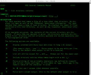Man Page für Terminal